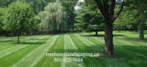 Ajax Lawn Care